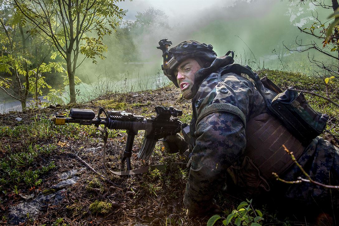 Sverige kan bidra med soldater 3